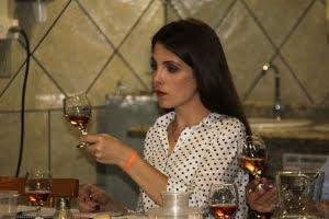 Curso análise vinhos AREAVID (7)